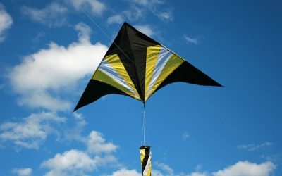 Best Kites' Manufacturers