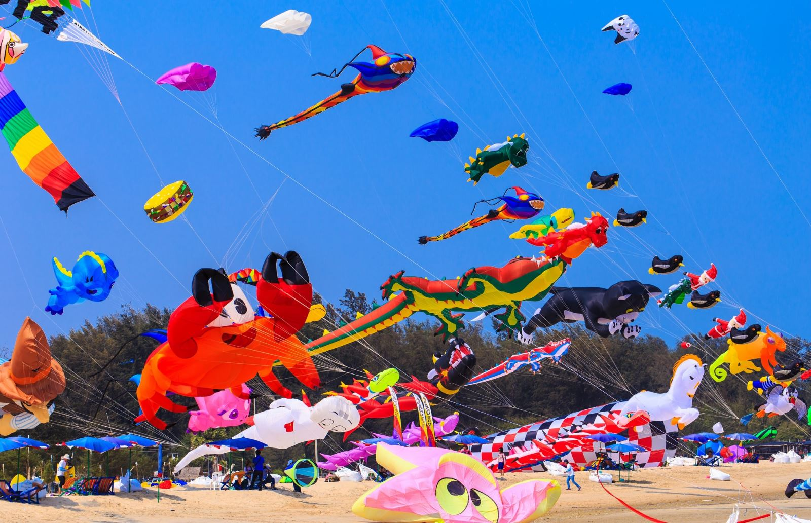 international-kite-fliers-showcase-skills-dubai-international-kite-fest-1499